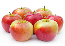 Apples. Red apples on a white background Royalty Free Stock Photography