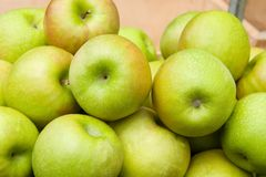 Apples. Organic apples stock images