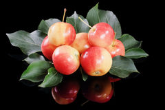 Apples. Fresh apples on black background Royalty Free Stock Photography