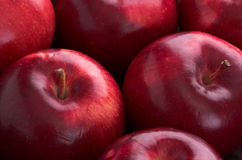 Apples. Red shiny Empire apples in strong light Royalty Free Stock Photography