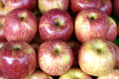 Apples. A pile of red apples Stock Images