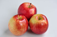 Apples. Closeup image of three ripe empire apples royalty free stock photos