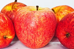 Apples. Apple is the pomaceous fruit of the apple tree Royalty Free Stock Images