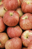 Apples. A pile of apples for sale at a market Royalty Free Stock Photography