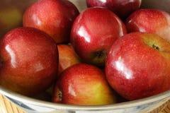 Apples Stock Image
