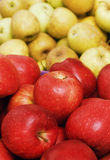Apples. Fresh red and yellow apples Royalty Free Stock Images