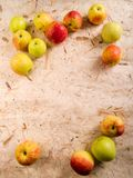 Apples. Decorative frame with natural background Royalty Free Stock Photos