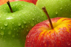 Apples. Green and red apples composition Royalty Free Stock Photos