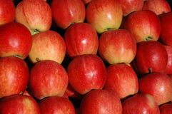 Apples. Close-up of a stack of apples Stock Photography