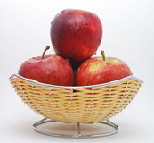 Apples Stock Photography