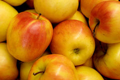 Apples. Several Apples Golden Red stock images