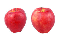 Apples. Two apples on isolated background with clipping path Stock Photography