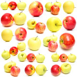 Apples. Red and yellow apples on white background. Isolation. Shallow DOF Stock Image