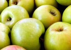 Apples. Fresh green apples stock images