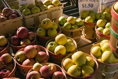 Apples. Red and golden delicious apples at a farmer's market in Rochester, New York Stock Photo