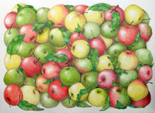 Apples. Very sweet apples on the hand drawn picture Royalty Free Stock Photography