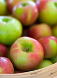 Apples. Red and green apples in a basket Royalty Free Stock Photography
