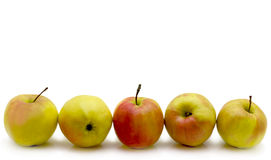 Apples. Five apples laid out horizontally in the bottom of a picture Stock Photos