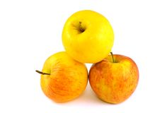 Apples. Three red & yellow apples on white stock image