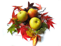 Apples And Autumn Leaves Stock Image