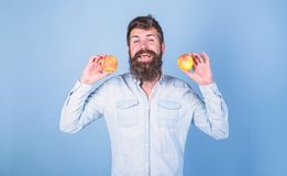 Apples antioxidant compounds responsible health benefits. Nutritional choice. Man with beard hipster hold apple fruit in. Hand. Apples popular type fruit in royalty free stock images