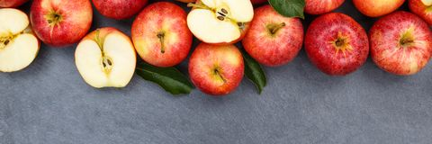 Apples apple fruit fruits slate copyspace banner red top view Stock Photos