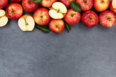 Apples apple fruit fruits slate copyspace red top view Royalty Free Stock Photography