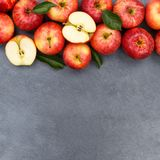 Apples apple fruit fruits slate copyspace square red top view Royalty Free Stock Image