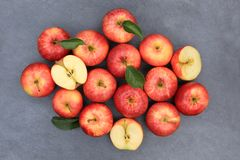 Apples apple fruit fruits slate red top view Stock Photos