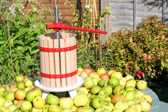 Apples with an apple press. Apples with an apple press ready to be pressed for juice or cider Royalty Free Stock Image