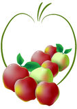 Apples. Apple symbol and reed and green apples on white background Royalty Free Stock Image