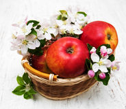Apples  and apple tree blossoms Stock Image