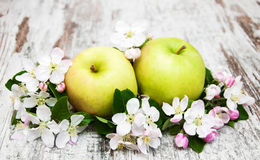 Apples  and apple tree blossoms Stock Photos