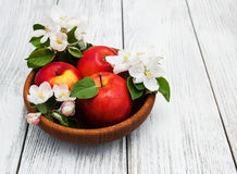 Apples and apple tree blossoms Stock Images