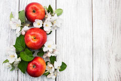 Apples and apple tree blossoms Royalty Free Stock Photography