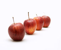 Apples arranged as a line and only one is focused. On white background royalty free stock image