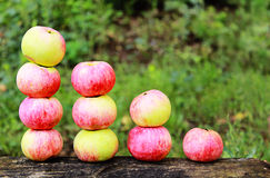 Apples arranged in a diagram Royalty Free Stock Photography