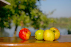 Free Apples At The Table Stock Image - 21460991