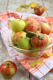 Apples autumn. In a glass cup on the table Royalty Free Stock Photography