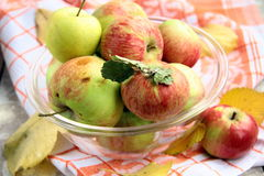 Apples autumn. In a glass cup on the table Stock Photography