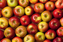 Apples Background Royalty Free Stock Image