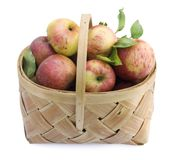 Apples on basket Royalty Free Stock Photo