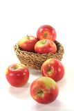 Apples in the basket. Red and yellow apples in the basket before a white background Royalty Free Stock Images