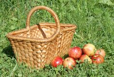 Apples with basket Royalty Free Stock Photos