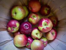Apples in a basket Stock Images