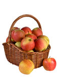 Apples in the basket. Autumn apples in a wicker basket Stock Photo