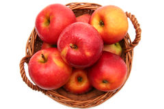 Apples in basket. Red fresh apples in basket on a white background Royalty Free Stock Photography