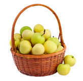 Apples in a basket. Organic apples in a basket isolated on white royalty free stock image