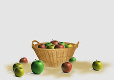 Apples in the basket. Stored apples in the basket and outside. The autumn harvest. Blank background may be added according to your needs Stock Photo