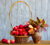 Apples in a basket with autumn leaves Royalty Free Stock Photography